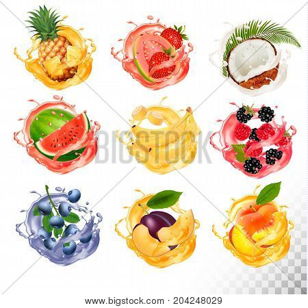 Set of fruit juice splash. Pineapple strawberry watermelon mango peach blackberry raspberry banana guava bueberry coconut. Vector