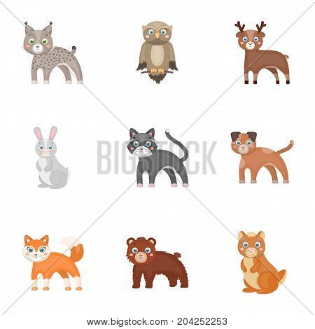Farm, zoo, ecology and other  icon in cartoon style.Australia, nature, toys, Australia, nature, toys,
