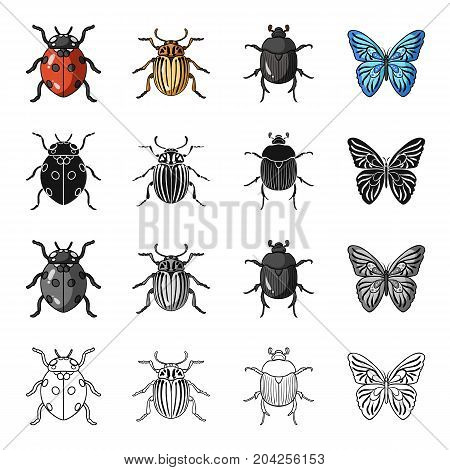 Ladybug, Colorado beetle, insect bug, butterfly. Insects set collection icons in cartoon black monochrome outline style vector symbol stock illustration .