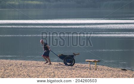 Zhytomyr, Ukraine - MAY 05, 2015: Cleaning the beach, preparing for high season, seashells and trash in the yellow wheelbarrow