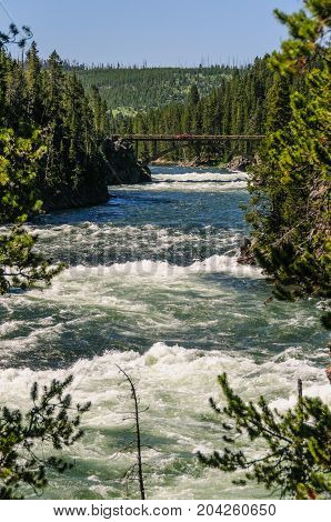 The Yellowstone river, upstream from the upper Falls. Yellowstone National Park.