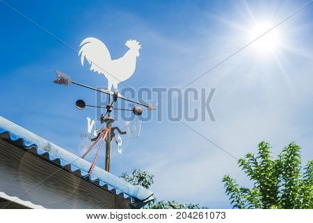 Wind Vane Or Weather Vane Chicken Style Rotate By Wind Blow To Indicator Wind Direction On Roof