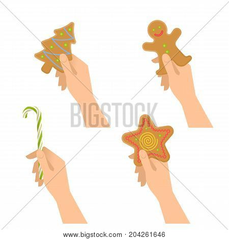 Human hands hold christmas sweet symbols: cookies, candy cane. Flat illustration of male and female hands with traditional xmas gifts and treats: gingerman, star, new year tree. Vector design elements