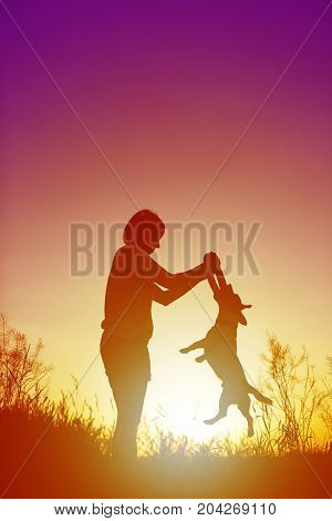 Silhouette of woman playing with dog at sunset.