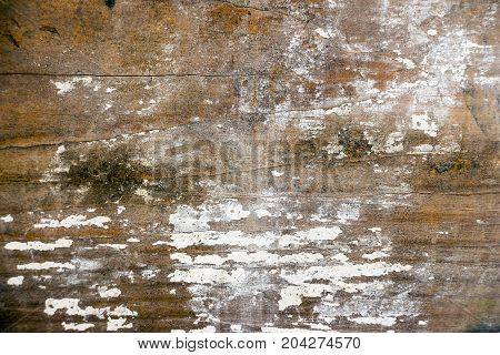 Abstract wooden background with remnants of white paint