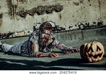 Halloween Man Crawling To Pumpkin
