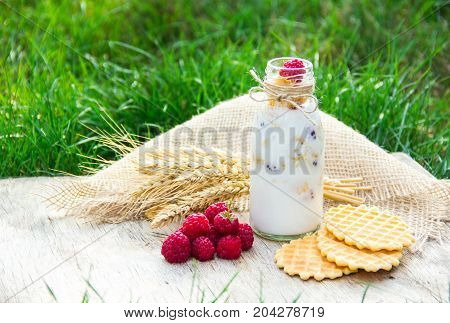 Smoothies with raspberries and granola waffles. Useful breakfast in nature. Picnic in the garden.
