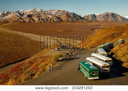 Turistic Buses for guided tours in National park, Alaska, US