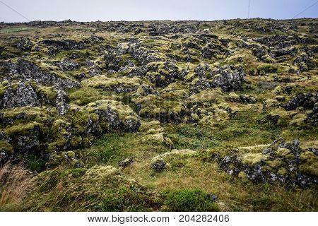 Field of volcanic volcanic lava Iceland, Icelandic lava fields.