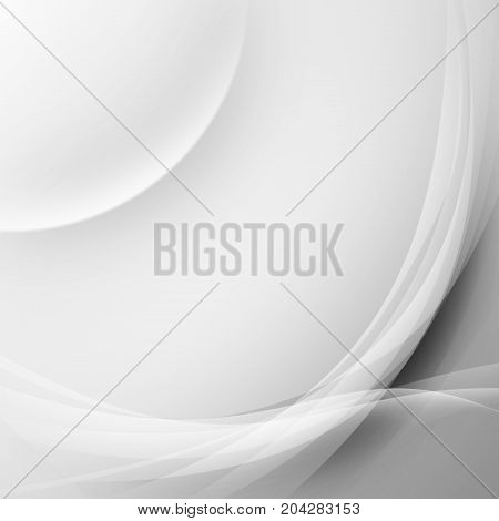 Abstract beautiful curve and line on gradient background