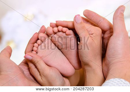 Baby feet in the hands of the parents. The unity of the family.