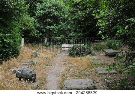 Roman era ruins and lush vegetation in the national botanical garden of Athens Greece. poster