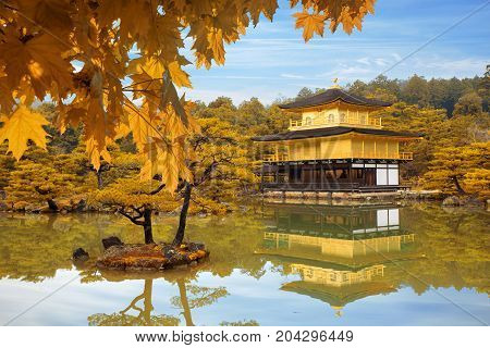 Japan Autumn season of Kinkakuji Temple (The Golden Pavilion) in Kyoto Japan.