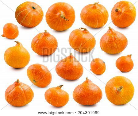 Many various pumpkins at various angles isolated on white background