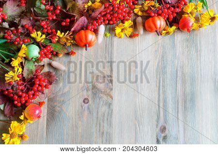 Fall background with seasonal fall nature berries pumpkins apples and fall flowers on the wooden background. Fall concept,free space for text. Fall still life. Fall background