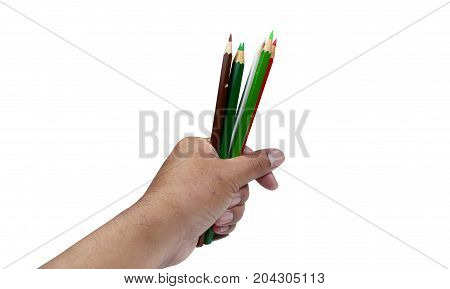A Hand Holding  Color Pencils On White Background Isolated