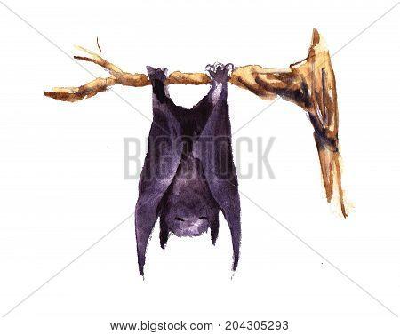 hand drawn Characters halloween bat black on three