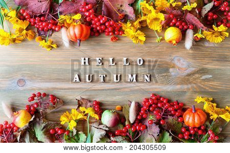 Fall background. Hello Autumn concept. Fall background with Hello Autumn letters and seasonal nature berries fall pumpkins and fall flowers on the wooden background. Fall background. Fall still life
