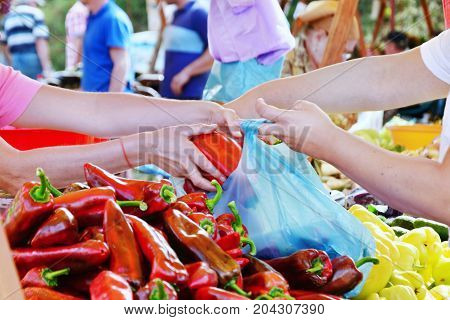 Buyer and vendor hand filling plastic bag with fresh vegetables at the farmers market. Shopping autumn crops.