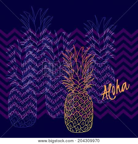 Pineapple poster, vector illustration. Hand drawn exotic tropical fruit in outline. Aloha means Hello in Hawaii.