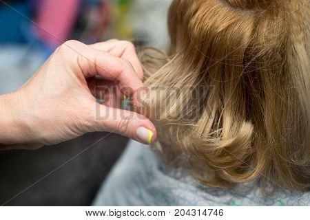 wrap curling hair in a beauty salon