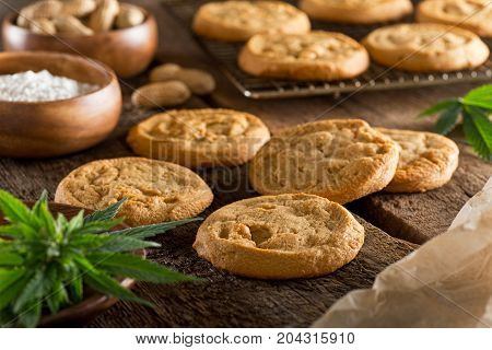 Delicious fresh homemade peanut butter marijuana cookies.