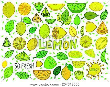 lemon illustration vecto background with lemon and lemon slice