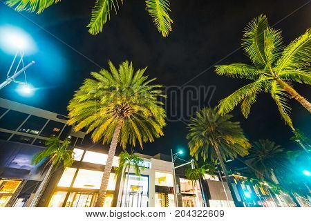 Palm trees in Rodeo Drive at night Beverly Hills. California USA