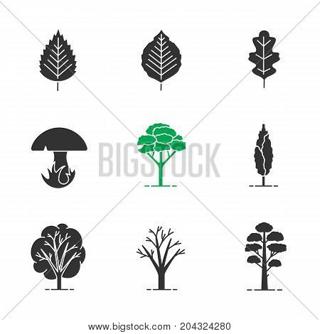 Trees glyph icons set. Silhouette symbols. Poplar, birch, oak leaves and trees, mushroom, pine. Vector isolated illustration