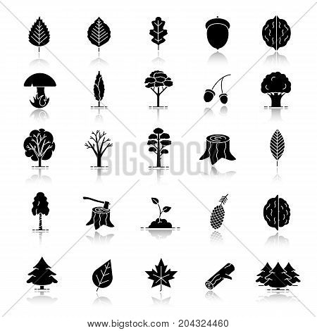 Tree types drop shadow black glyph icons set. Forest, park. Forestry. Isolated vector illustrations