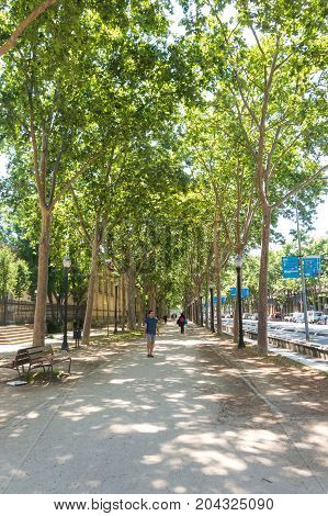 Paseo Picasso Walk In Barcelona, Next To The Ciutadella Park, On The Gothic Quarter Of Barcelona.
