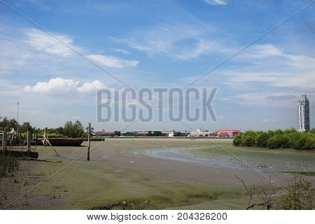 White Egret Birds On Land While Water Level Up At Estuary Of Chao Phraya River