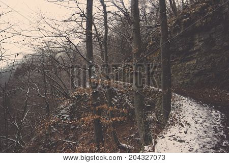 View of curve left pathway covered in snow among cliff and trees in winter season at Bled, Frozen trail sidewalk around mountain with foothills and precipice covered by brown grasses and trees in Slovenia