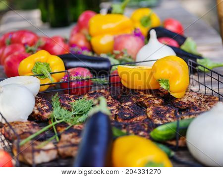 Clouse-up of vegetables and meat. Colorful table.