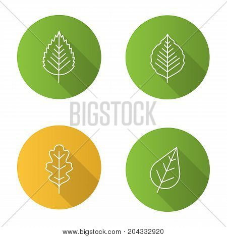 Leaves flat linear long shadow icons set. Poplar, birch, oak leaves. Vector outline illustration