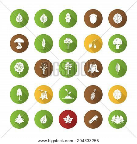 Tree types flat design long shadow glyph icons set. Forest, park. Forestry. Vector silhouette illustration