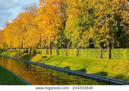 Fall landscape. Fall trees along the city channel in sunny fall weather. Sunny fall in the city. Fall background with fall trees in the park. Colorful fall landscape view