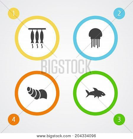 Collection Of Shark, Medusa, Sink And Other Elements.  Set Of 4 Seafood Icons Set.