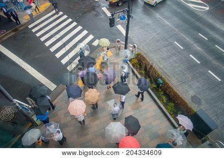 TOKYO, JAPAN JUNE 28 - 2017:Aerial view of unidentified people under umbrellas on zebra crossing street in Jimbocho district located in Tokyo, Japan.