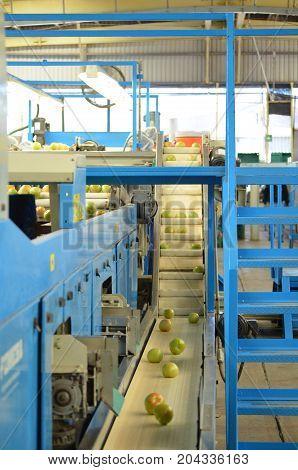 Conveyor belt with an electronic sorter machine.