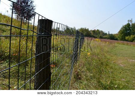 A wire fence in the prairie landscape
