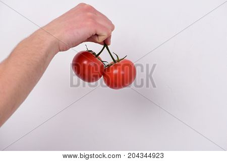 Male Hand Holds Bunch Of Red Tomatoes.
