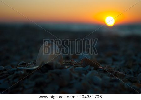 Beautiful sunrise over the sea, orange red sun, purple blue and pink sky without clouds, blue sea, seashell sand wave vacation