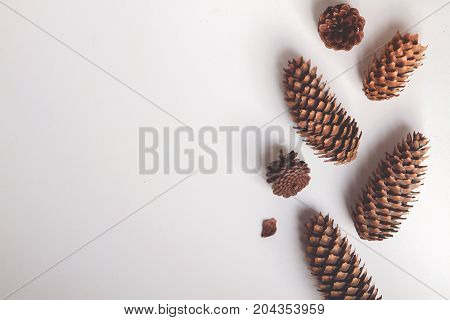 Natural cone composition pattern on white. top view. Christmas pattern background wallpaper. New Year arrangement. toned