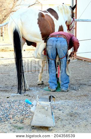 Male farrier working on a horseshoe on a ranch outdoors.
