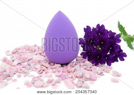 the sponge powder puff creams to eliminate skin defects isolated on white background