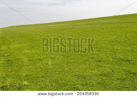 coastal scenery with grassy overgrown dam around Buesum in Dithmarschen at Schleswig-Holstein Germany