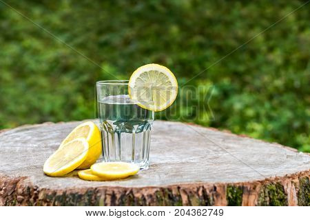 The slice of lemon on a glass of water on wooden stump. Green background outdoor