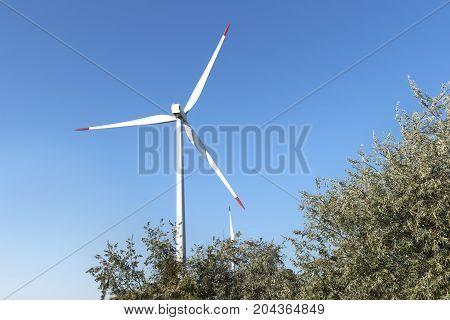 Generator Power Energy Field Wind Green Turbine