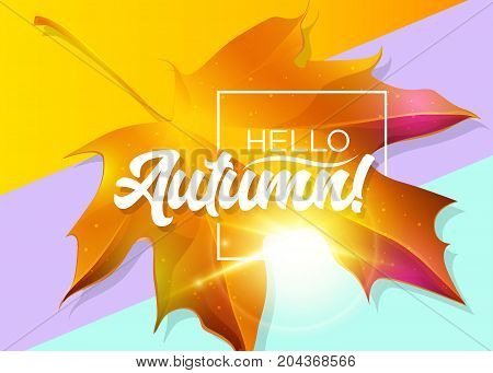 Hello Autumn Vector Design with Yellow Maple Leaf Golden Sunlight Flare White Frame and Lettering on Pastel Background. Seasonal Illustration for Sale Banner Blog Poster Special Offer.